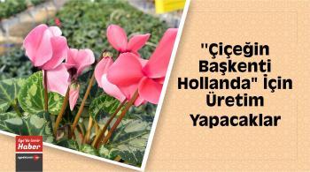"""""""Çiçeğin Başkenti Hollanda"""" İçin Üretim Yapacaklar"""