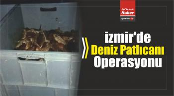 İzmir'de Deniz Patlıcanı Operasyonu