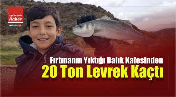 Fırtınanın Yıktığı Balık Kafesinden 20 Ton Levrek Kaçtı