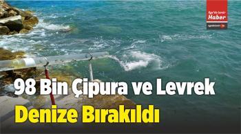 Karaburun İlçesinde 98 Bin Çipura ve Levrek Denize Bırakıldı