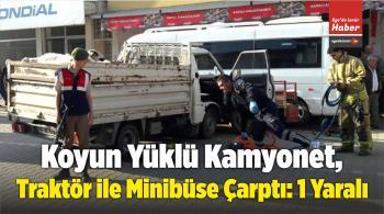 Koyun Yüklü Kamyonet, Traktör ile Minibüse Çarptı: 1 Yaralı