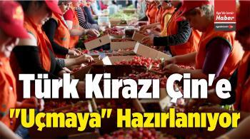 """Türkiye, Kiraz Üretiminde Çin'e """"Uçmaya"""" Hazırlanıyor"""