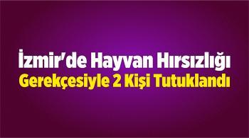 İzmir'de Hayvan Hırsızlığı Gerekçesiyle 2 Kişi Tutuklandı