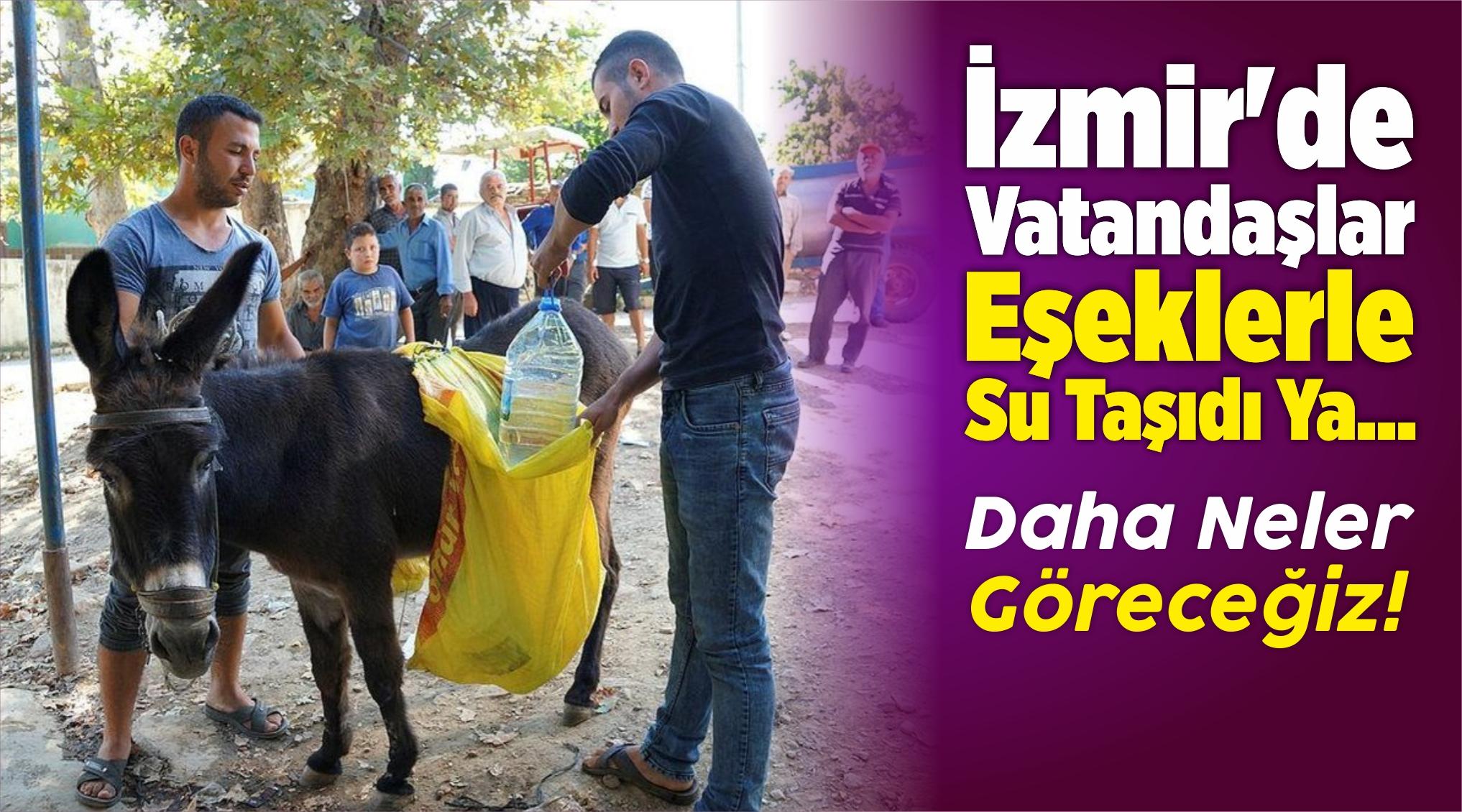 """İzmir'in """"Susuz Mahallesinde"""" Eşeklerle Su Taşınıyor"""