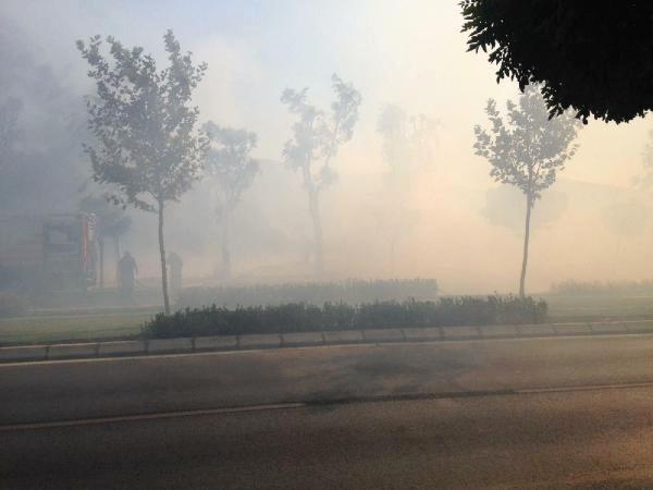 İzmir de Yol Kenarındaki Otluk Alanda Yangın