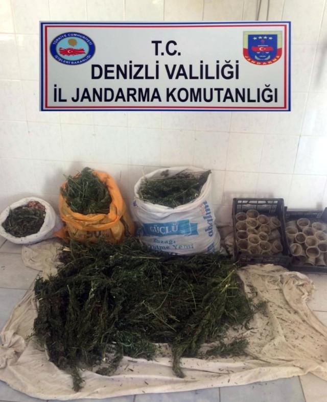 Jandarma 37,250 Kilo Esrar Yakaladı