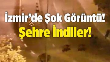 İzmir'de Şok Görüntü! Şehre İndiler