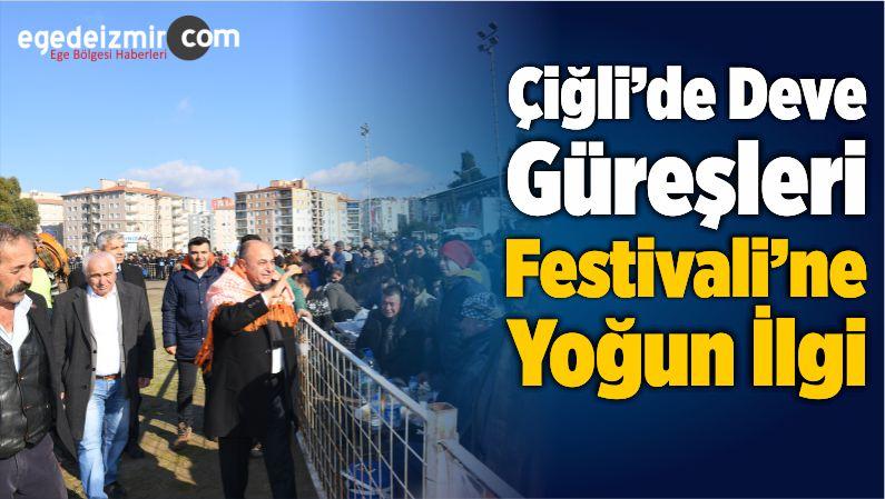Çiğli'de Deve Güreşleri Festivali'ne Yoğun İlgi