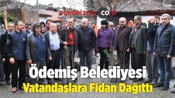 Ödemiş Belediyesi Ceviz ile Kestane Fidanı Dağıttı