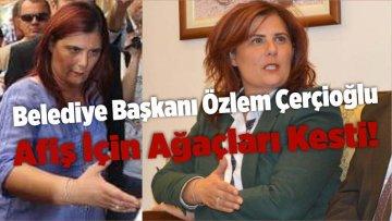 Belediye Başkanı Özlem Çerçioğlu Afiş İçin Ağaçları Kesti!