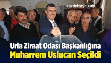 Urla Ziraat Odası Başkanlığına Muharrem Uslucan Seçildi