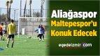 Aliağaspor, Maltepespor'u Konuk Edecek
