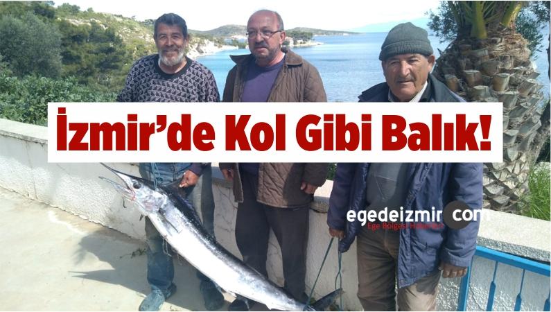 İzmir'de 40 Kiloluluk Kılıç Balığı Yakalandı
