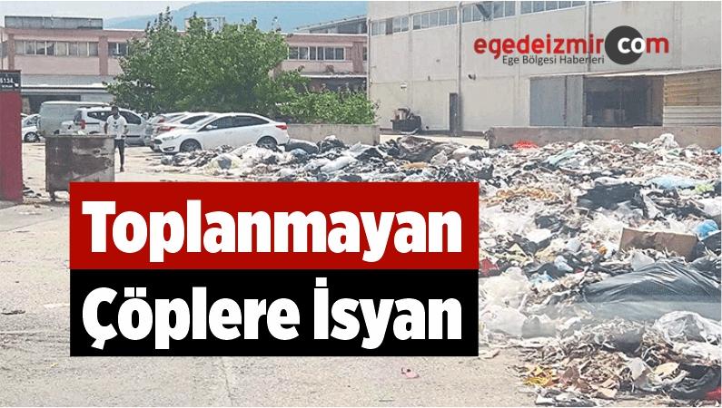 Toplanmayan Çöplere İsyan