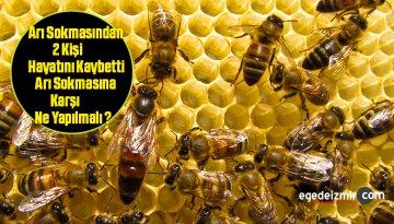 Arı Sokmasından 2 Kişi Hayatını Kaybetti