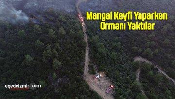 Mangal Keyfi Yaparken Ormanı Yaktılar