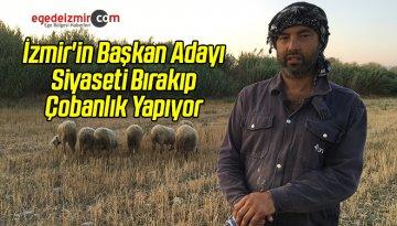 İzmir'in Başkan Adayı Siyaseti Bırakıp Çobanlık Yapıyor