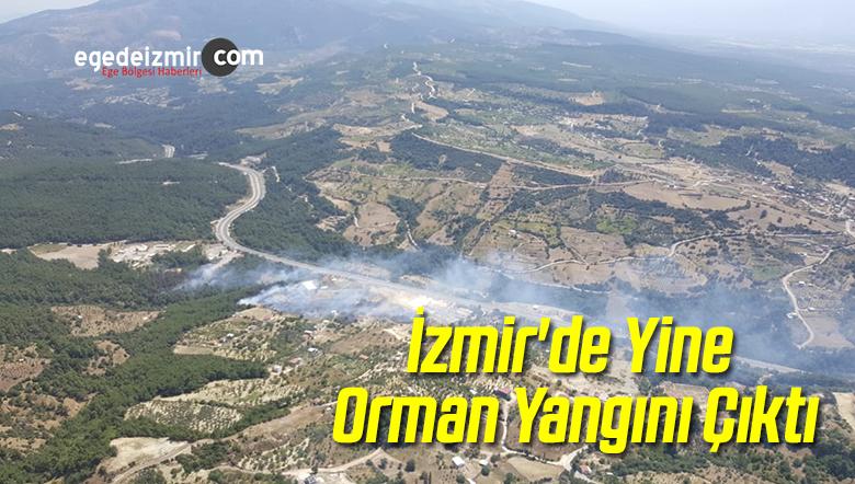 İzmir'deki Sabuncubeli Mevkisinde Orman Yangını Çıktı