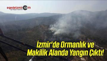 İzmir'de Ormanlık ve Makilik Alanda Yangın Çıktı!