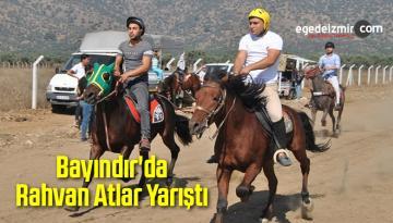 Bayındır'da Rahvan Atlar Yarıştı