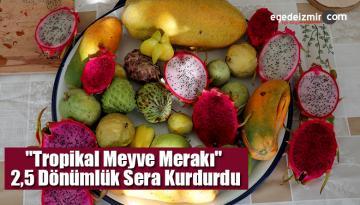 """""""Tropikal Meyve Merakı"""" 2,5 Dönümlük Sera Kurdurdu"""