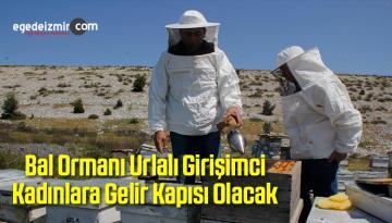 Bal Ormanı Urlalı Girişimci Kadınlara Gelir Kapısı Olacak