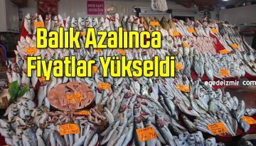 Yurt Geneliyle Birlikte Uşakta da Balıklar Azalınca Fiyatlar Yükseldi