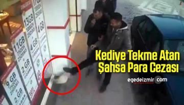 Kediye Tekme Atan Şahsa Para Cezası