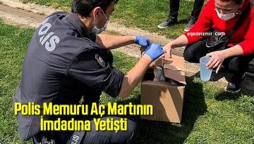 İzmir'de Polis Memuru Aç Martının İmdadına Yetişti