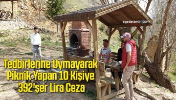 Tedbirlerine Uymayarak Piknik Yapan 10 Kişiye 392'şer Lira Ceza