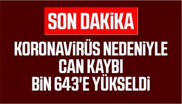 TÜRKİYE'DE KORONAVİRÜS(COV-2) NEDENİYLE CAN KAYBI BİN 643'E YÜKSELDİ