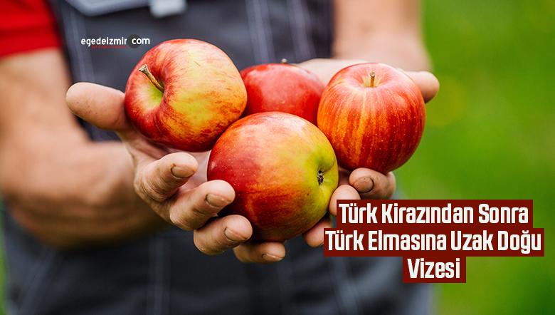 Türk Kirazından Sonra Türk Elmasına Uzak Doğu Vizesi