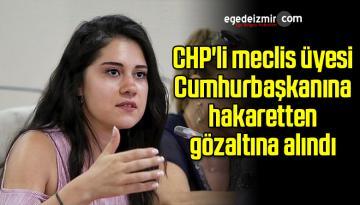 CHP'li meclis üyesi Cumhurbaşkanına hakaretten gözaltına alındı