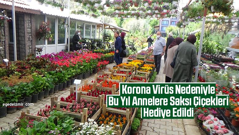 Korona Virüs Nedeniyle Bu Yıl Annelere Saksı Çiçekleri Hediye Edildi