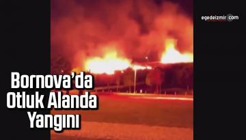 Bornova'da otluk alanda yangını