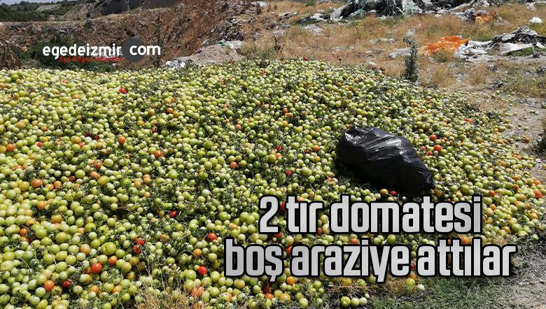 2 tır domatesi boş araziye attılar