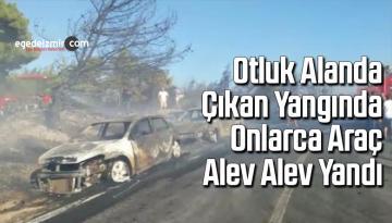Otluk alanda çıkan yangında onlarca araç alev alev yandı