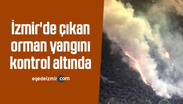 İzmir'de çıkan orman yangını kontrol altında