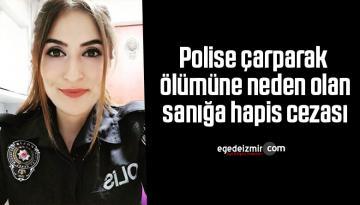 Polise çarparak ölümüne neden olan sanığa hapis cezası