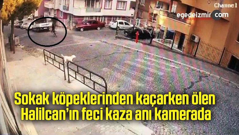 Sokak köpeklerinden kaçarken ölen Halilcan'ın feci kaza anı kamerada
