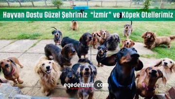 """Hayvan Dostu Güzel Şehrimiz """"İzmir"""" ve Köpek Otellerimiz"""