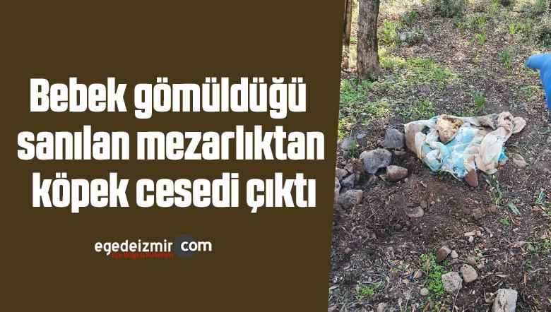 Bebek gömüldüğü sanılan mezarlıktan köpek cesedi çıktı