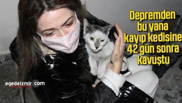 Depremden bu yana kayıp kedisine 42 gün sonra kavuştu