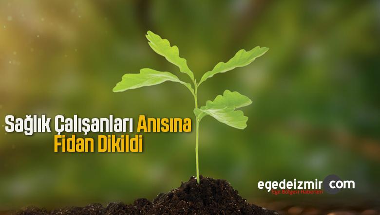 Sağlık Çalışanları ve Prof. Dr. Cemil Taşçıoğlu Anısına Zeytin Fidanı Dikildi