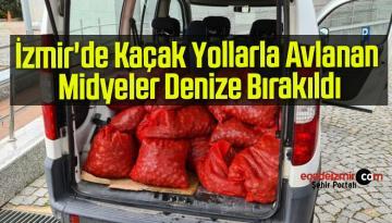 İzmir'de Kaçak Yollarla Avlanan 400 Kilo Midye Denize Bırakıldı