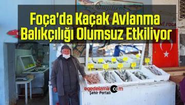 Foça'da Kaçak Avlanma Balıkçılığı Olumsuz Etkiliyor