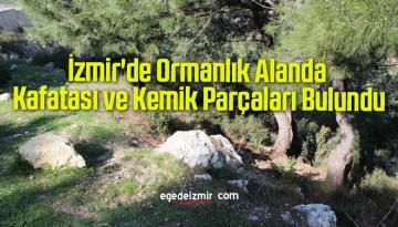 İzmir'de Ormanlık Alanda Kafatası ve Kemik Parçaları Bulundu