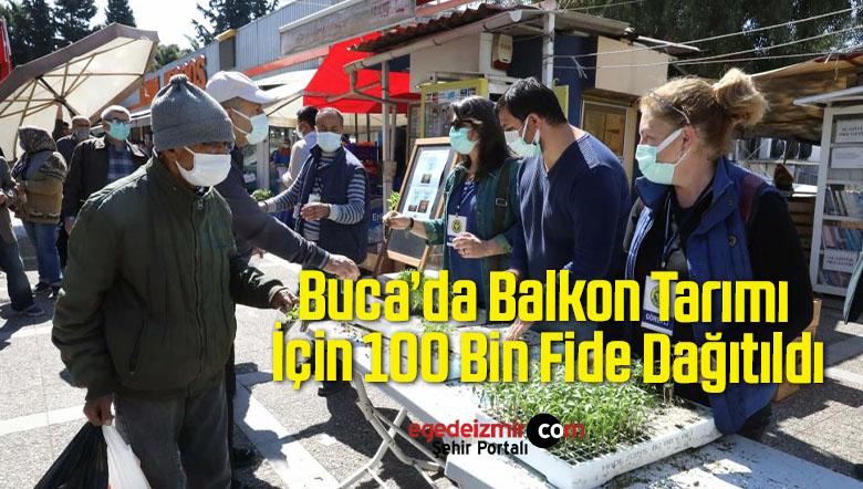 Buca'da Balkon Tarımı İçin 100 Bin Fide Dağıtıldı