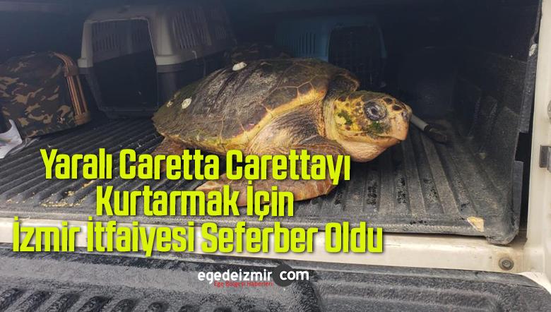 Yaralı Caretta Carettayı Kurtarmak İçin İzmir İtfaiyesi Seferber Oldu