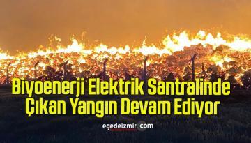 Biyoenerji Elektrik Santralinde Çıkan Yangın Devam Ediyor